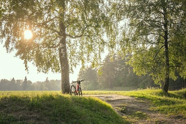Nachhaltiges Reisen mit Fahrrad macht Spaß